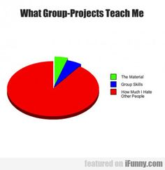 What Group Projects Teach Me...