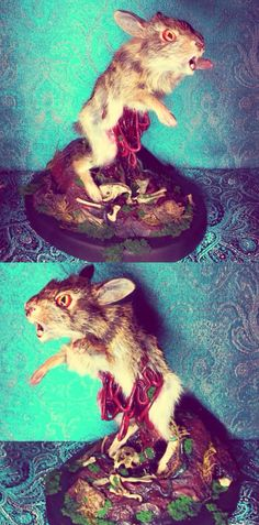 Rogue Taxidermy Bunny by Artist Emi Slade.... Well there go my good dreams for the night!