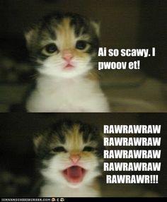 Soooooo cute! <3