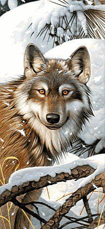 Волк - Схемы вышивки - Miss_iks - Авторы - Портал «Вышивка крестом»