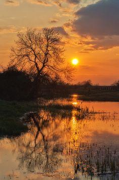 Sunset plain