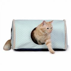 Modeled this after the best selling Outdoor Heated Kitty Camper.