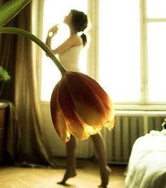 Photo illusion d'optique : Cette danseuse semble avoir une tulipe en guise de tutu