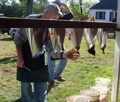 article: Processing Your Backyard Chickens by The Happy Homesteader on Mother Earth News