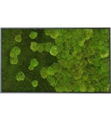 Interior, Design, Home Decor, Urban, Table, Growing Plants, Gutter Garden, Indoor House Plants, Home And Garden