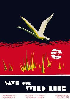 Save our Wild Life - WPA Posters - ca. 1940. Trumpeter Swan. Illustrated by Dorothy Waugh. Vintagraph Fine-Art Wall Prints and Posters