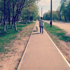 #North #puppy #springtime #samoyed #самоед #instadog #instapuppy #green #white
