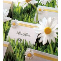 Our very own coordinating daisy theme place cards. Comes complete with mini gingham check ribbon and a mini faux daisy. Ships blank for your calligrapher to perform their magic.Each package contains 8 place cards. Daisy Party, Daisy Wedding, Our Wedding, Wedding Flowers, Wedding Ideas, Wedding Inspiration, Spring Wedding, Wedding Colors, Dream Wedding