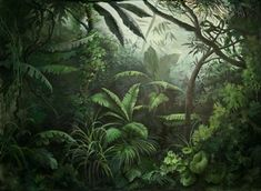 Tromp l'oeil Jungle, Dubai, 2008 – Roberto Bricchi Motif Jungle, Jungle Art, Jungle Drawing, Fantasy Forest, Fantasy Art, High Fantasy, Fantasy Landscape, Landscape Art, Jungle Pictures