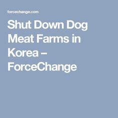 Shut Down Dog Meat Farms in Korea – ForceChange