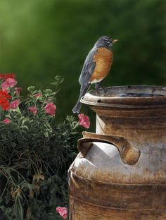 http://www.artcountrycanada.com/images/haley-heritage-garden.jpg