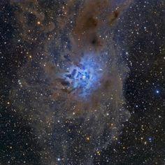 NGC 7023, the Iris Nebula.