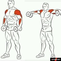 8 Amazing Shoulder Exercises - WeGrowMuscle Tap the link and Check out why all Fitness addicts are going crazy about this new product! Fitness Workouts, Sport Fitness, Muscle Fitness, Mens Fitness, At Home Workouts, Fitness Tips, Health Fitness, Fitness Outfits, Fitness Planner
