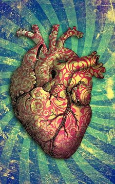 Anatomical heart tattoo with bleeding heart flowers. Description from pinterest.com. I searched for this on bing.com/images