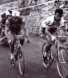 Raymond Poulidor & Tom Simpson