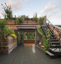 To a rooftop garden.