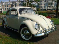 vw bugs | Classic 1963 VW Beetle BuG Sedan | Classic VW Beetles & BuGs ...