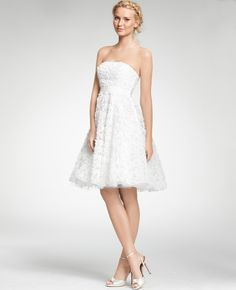 Ann Taylor - AT Dresses - Embroidered Tea Length Strapless Dress