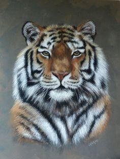 tigre pastels secs sur bois