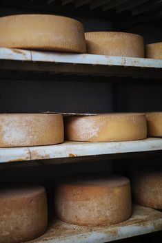 aging cheese at cascina la benedetta in Franciacort Italy, The Taste SF Aesthetic Food, Travel Aesthetic, Milan Restaurants, Food Inspiration, Travel Inspiration, Happy Cow, Wine Education, Artisan Cheese, Northern Italy