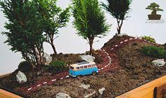 Mini ogrody – tworzenie ogródków w skali.