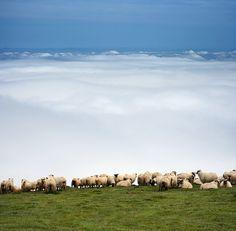Gorbea Mount. Bizkaia. Basque Country