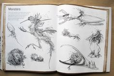 The Drawing Book Sarah Simblet