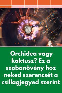 Wood Watch, Wooden Clock