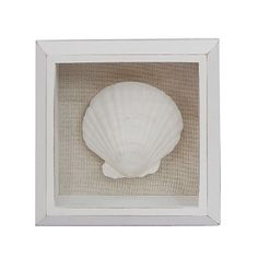 -Make these- Starfish, Shells, Put above bed.  SONOMA life + style Scallop Shadowbox Frame