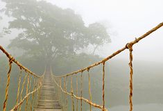 Картина Картина Подвесной мост Длина: 95 см Высота: 65 см 279 000 BYR