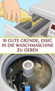10 gute Gründe, Essig in die Waschmaschine zu geben. #essig #wäsche #waschmaschine #life #hacks #hausmittel Flower Aesthetic, Aesthetic Images, Flower Drawing Images, Sewing Courses, Visual Memory, Craft Business, Feeling Happy, Tupperware, Washing Machine