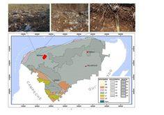 En el karst los inventarios de carbono orgánico en el suelo deben revisarse