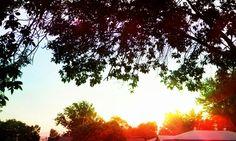 Smoke filled sunset