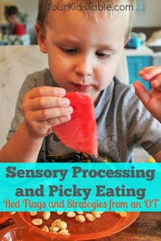 EVERYTHING you need to know about sensory processing and picky eating: why, red flags, and what to do!