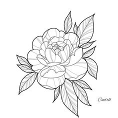 Flower Outline Tattoo, Tatto Floral, Tattoo Outline Drawing, Peony Flower Tattoos, Simple Flower Tattoo, Flower Tattoo Drawings, Small Flower Tattoos, Peonies Tattoo, Floral Tattoo Design