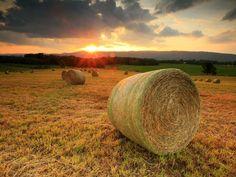 sunset nature fields 1600x1200 wallpaper – Nature Fields HD ...