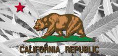 Petulant Police: California Law Enforcement Factions Fight Marijuana Legalization