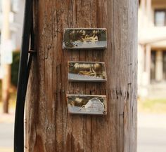 These quiet bits of visual punctuation on telephone poles in Albany caught our eye recently and we thought immediately of fairies, pixies, and sprites. Who else would care enough to adorn wooden te. Sprites, Punctuation, Pixies, Telephone, Utility Pole, Brooklyn, Street Art, Eye, Phone