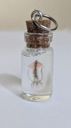 Squid in a bottle specimen charm necklace Small Glass Bottles, Antique Illustration, Cork, Illusions, Silver Plate, Delicate, Charmed, Necklaces, Personalized Items