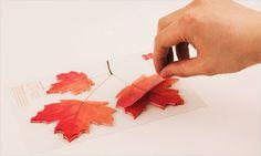 Leaf-it: Sticky Note Pad (Maple Leaf) – Hey Eonni