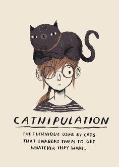 Crazy Cat Lady, Crazy Cats, Poster Print, Art Print, Cat Posters, Cat Memes, Funny Cat Quotes, Cool Cats, Cat Art