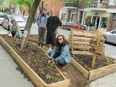Le projet comestible en permaculture urbaine dans Villeray (Montréal - Qc), source : 24hmontreal.canoe.ca Permaculture, Plantation, Guerrilla, Montreal, Earth, Plants, Deco, City, Modern