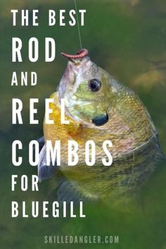 This is a close look at 3 of the best fishing rod and reel combos for bluegill, . - This is a close look at 3 of the best fishing rod and reel combos for bluegill, crappie and other p - Best Fishing Rods, Fishing Rods And Reels, Rod And Reel, Sport Fishing, Bass Fishing, Fishing Tackle, Women Fishing, Fishing Stuff, Fishing And Hunting