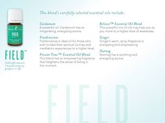 Young Living Essential Oils: Oola Field Infused 7 Collection
