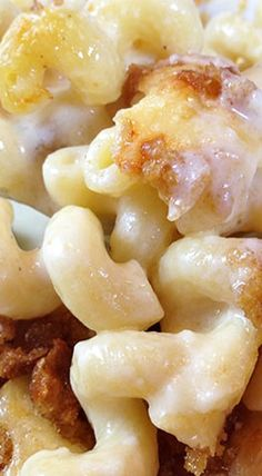Ultimate Three Cheese Gruyere Mac and Cheese. For all the cheesy mac & cheese lovers. If you love Gruyere, you'll love this ultimate homemade mac & cheese! Gruyere Mac And Cheese, White Mac And Cheese, Cheesy Mac And Cheese, Baked Mac And Cheese Recipe, Macaroni Cheese Recipes, Mac And Cheese Homemade, Pasta Recipes, Cooking Recipes, Water Recipes