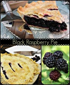 Black Raspberry Pie Recipe | Is It a Blackberry or Black Raspberry