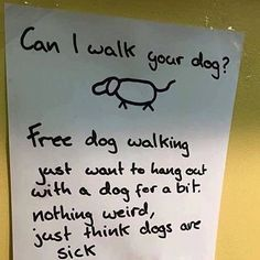 Can I walk your dog?