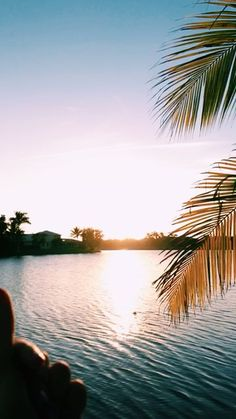 ☾𝓜𝓸𝓻𝓮 vsco video, video photography, travel photography, light photography Vsco Photography, Tumblr Photography, Travel Photography, Sunset Beach, Sunset Sky, Summer Pictures, Beach Pictures, Beautiful Sunset, Beautiful Places