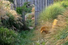 Compagnia del Giardinaggio: La messa a dimora di graminacee ed erbacee perenni