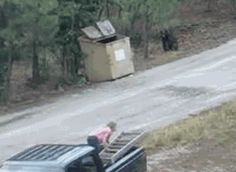 Bear savior - They save the trapped cubs in the dumpster. https://www.youtube.com/watch?v=wDZ60sEvX1Y